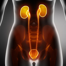 Best Urologist in Pune | Urologist in Pune
